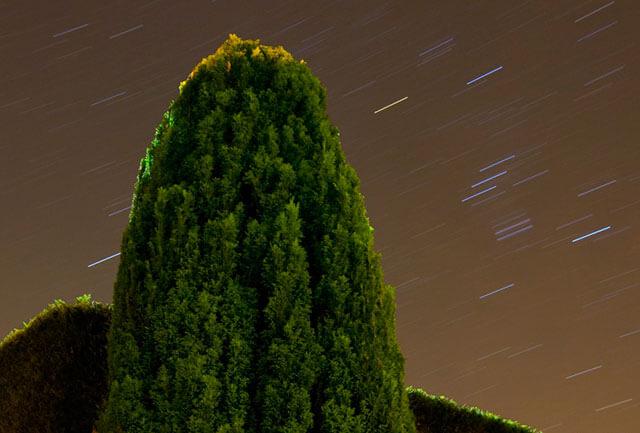 Estrellas en la noche