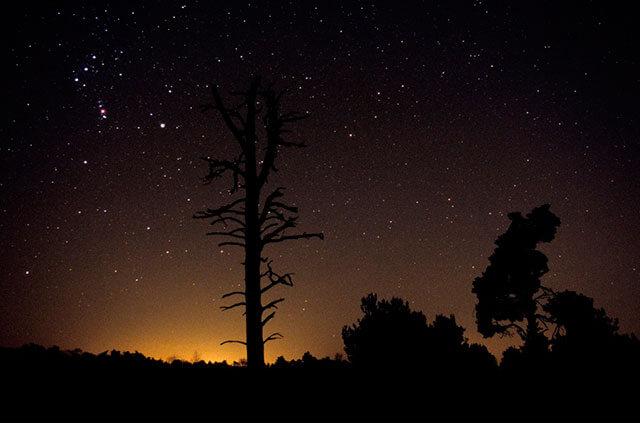 Foto nocturna consejos