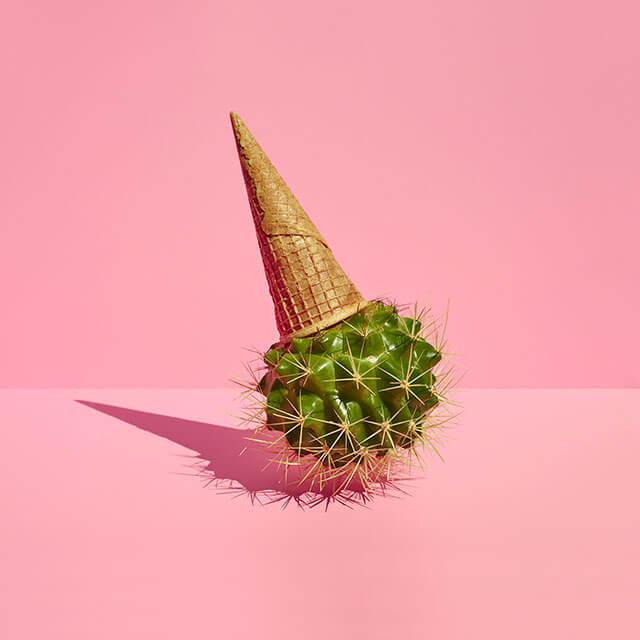 Cactus-cream-Paloma-Rincon