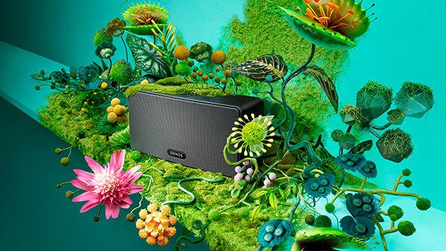 Sonos-Plants-Paloma-Rincón