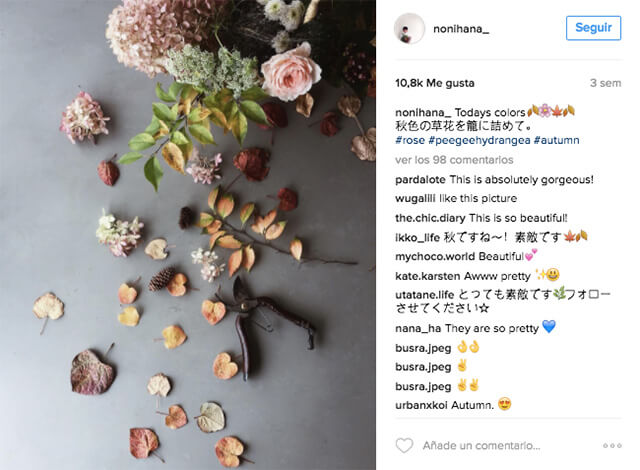 instagram-nonihana