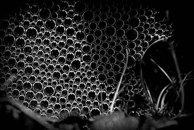 Fotografía abstracta con teleobjetivo