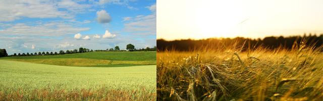 fotógrafo aficionado diferencia de ángulo