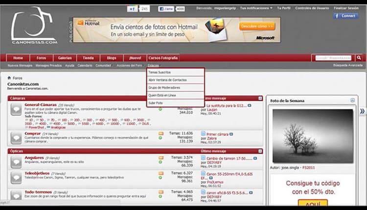 Interfaz de canonistas.com