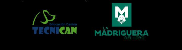 Curso de Fotografía publicitaria con animales con Javier Márquez y Jorge Valdivieso