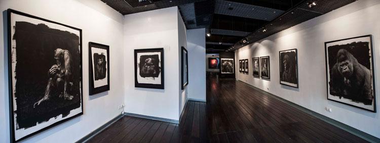 Expon tus obras en galerías de arte.